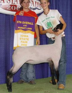Reserve Division 3 & 5th Overall - Iowa State Fair